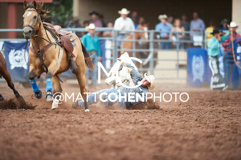 Steer wrestler Zac Parrington of Hoyt, KS competes at the Pikes Peak or Bust Rodeo in Colorado Springs, CO.<br /> <br /> <br /> UNEDITED LOW-RES PREVIEW<br /> <br /> <br /> File shown may be an unedited low resolution version used as a proof only. All prints are 100% guaranteed for quality. Sizes 8x10+ come with a version for personal social media. I am currently not selling downloads for commercial/brand use.