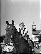 """01/08/1960<br /> 08/01/1960<br /> 01 August 1960<br /> R.D.S Horse Show Dublin (Monday). Miss Carol Nicholson exercising """"Stanley 11"""" owned by Mr David Mc Pherson."""