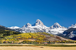 farm fields crowned with the Golden colors of fall spiced with a fresh autumn snow at Alta Wyoming in the valley of Teton Valley Idaho.