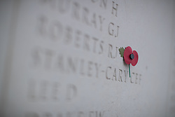 A poppy placed onto the Memorial Arboretum at the Armistice Day service at the War Memorial Arboretum, in Staffordshire.