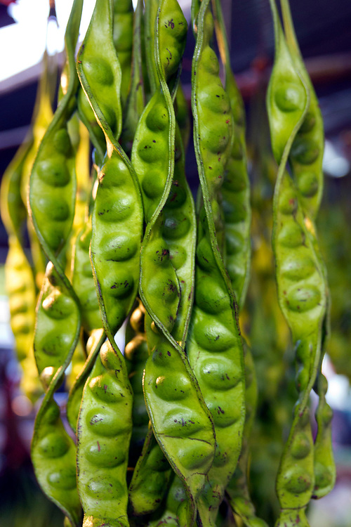 Twisted green beans in a pod, market stall ,Krabi, Thailand.