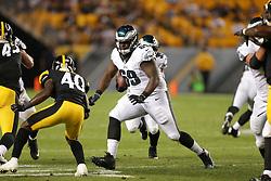 Philadelphia Eagles - Preseason game vs the Pittsburgh Steelers at Heinz Field