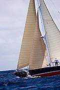 Pasha sailing in the Cannon Race at the Antigua Classic Yacht Regatta.