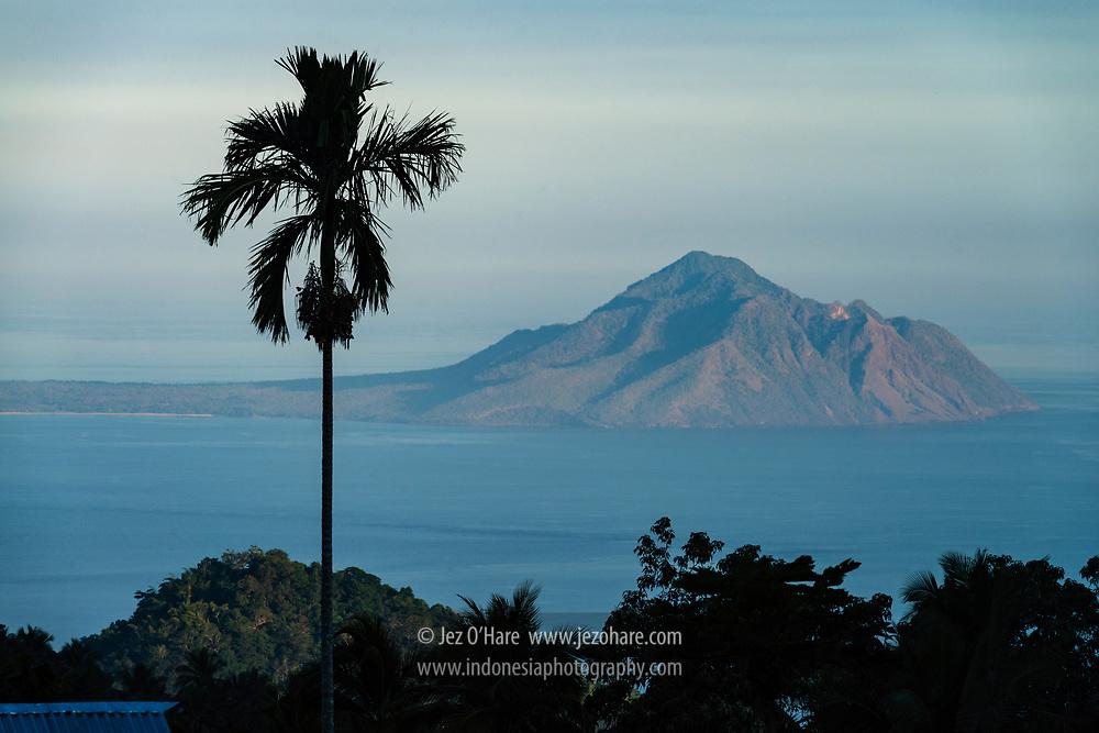 Pohon pinang dan Pulau Lembata terlihat dari Pulau Adonara, Flores Timur, Nusa Tenggara Timur, Indonesia