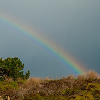 A Rainbow glows over coastal shrubbery near Pescadero, California.