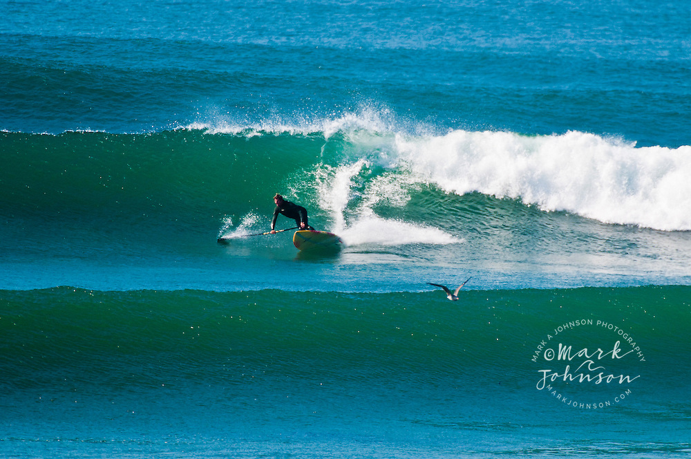 Stand-Up Paddle Surfing, Punto San Carlos, Baja California, Mexico ***Model Release available