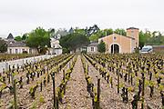sandy gravelly soil vineyard chateau haut brion pessac leognan graves bordeaux france