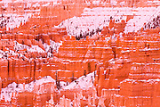 Evening light on snow-dusted hoodoos below Sunset Point, Bryce Canyon National Park, Utah USA