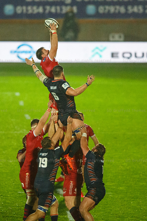 Llanelli, UK. 1 November, 2020.<br /> Scarlets replacement Ed Kennedy wins a lineout in the Scarlets v Edinburgh PRO14 Rugby Match.<br /> Credit: Gruffydd Thomas/Alamy Live News