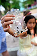 Young girl holding up plastic bag of frogs, froglets and tadpoles she caught in a pond in Cong Vien Van Hoa Park, Ho Chi Minh City (Saigon), Viet Nam.