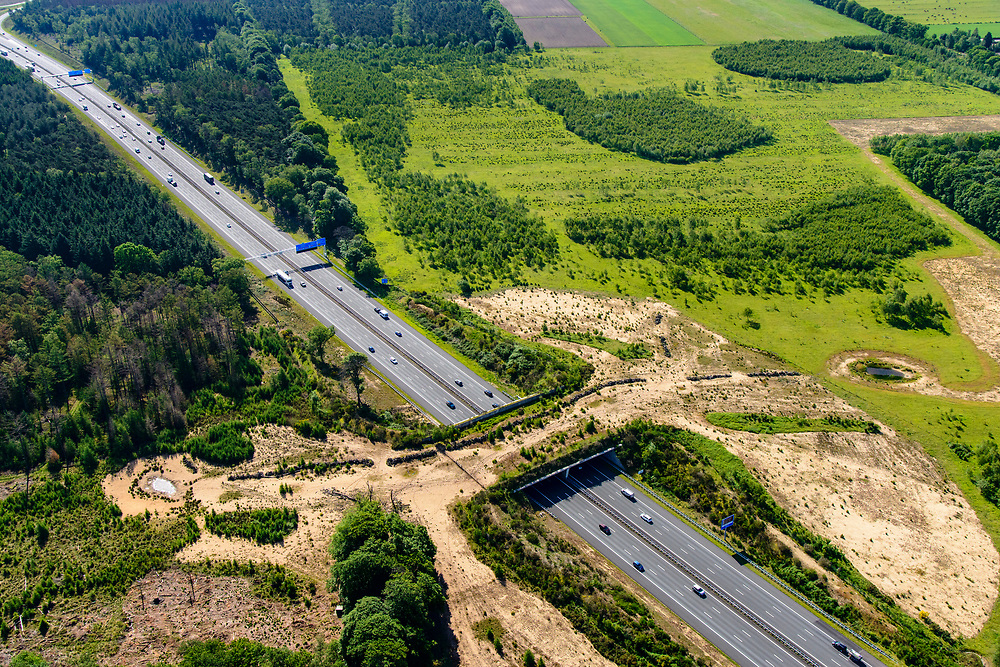 Nederland, Gelderland, Wolfheze, 29-05-2019; Ecoduct Jac. P. Thijsse overbrugt de A12 en verbindt de natuurgebieden Planken Wambuis en Reijerscamp. Is gebouwd om de versnippering tegen te gaan.<br /> Ecoduct Jac. P.Thijsse cross motorway  A12,  connects nature reserves the Planken Wambuis and Reijerscamp.<br /> luchtfoto (toeslag op standard tarieven);<br /> aerial photo (additional fee required);<br /> copyright foto/photo Siebe Swart