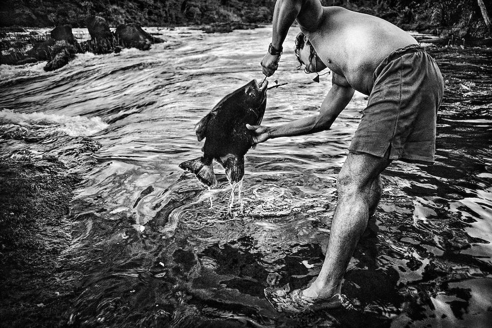 French guiana, Palassissi, Haut-Maroni, zone a acces reglemente.<br /> <br /> Peche. Pirai, aimara ou coumarou, le poisson reste la base alimentaire des populations amerindiennes du Haut-Maroni. Les poissons carnivores, derniers maillons de la chaîne alimentaire, sont les vecteurs de la contamination mercurielle.<br /> <br /> Les symptomes se traduisent, a court terme, par une reduction du champ visuel, une baisse de l'acuite auditive, des troubles de l'equilibre et de la marche. A plus long terme, les personnes exposees souffrent d'encephalopathie, d'une deterioration intellectuelle, de cecite et de surdite. La population la plus exposee est celle des jeunes enfants, mais c'est au stade foetal que l'infection est la plus profonde car irreversible et difficilement decelable.<br /> Cette contamination se revele tres pernicieuse. On a pu mesurer, lors de precedents, l'etalement dans le temps des consequences sanitaires du mercure. En 1932, des quantites de mercure avaient ete rejetees progressivement dans les eaux de Minamata au Japon. Ce n'est que 23 ans apres que sont apparus les premiers cas de deces et une anormale multiplication de handicaps physiques et de malformations foetales.