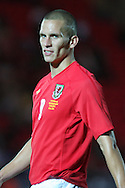 Steve Morison of Wales talks to referee Mattias Gestranius (out of picture). friendly international match, Wales v Luxembourg at the Parc y Scarlets stadium in  Llanelli on Wed 11th August 2010. pic by Andrew Orchard, Andrew Orchard sports photography,