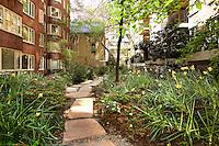 Garden at 211 Madison Avenue