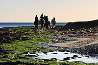 Horse Riding school on the beach at Bembridge, Isle of Wight