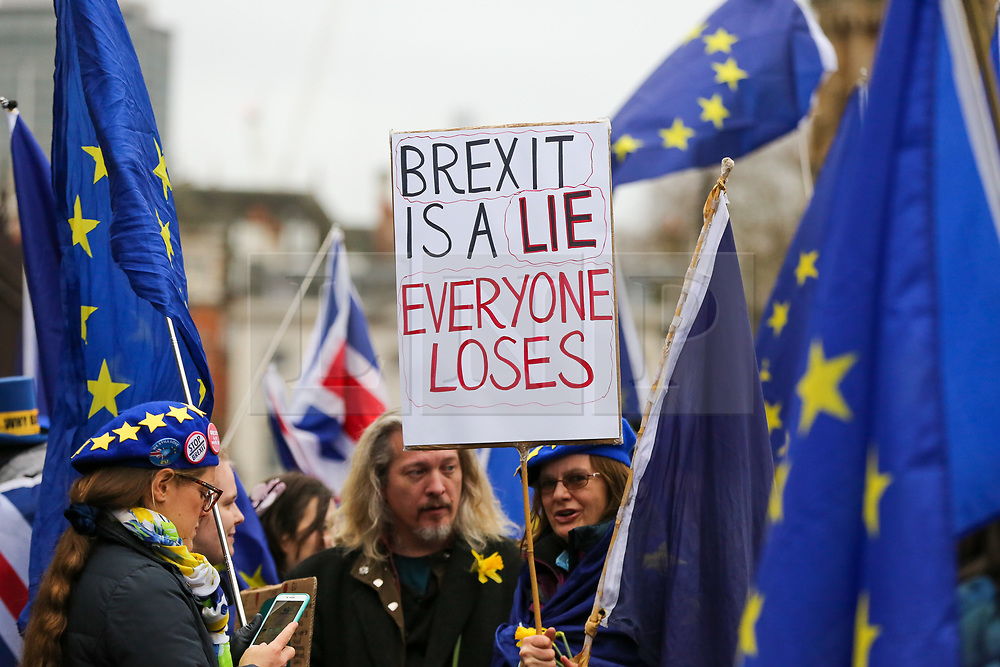 "© Licensed to London News Pictures. 30/01/2020. London, UK. A Pro-European supporter hold a ""BREXIT IS A LIE EVERYONE LOSES"" sign outside Houses of Parliament on the day before Brexit Day.  The UK will leave the European Union at 11pm on the 31 January 2020. Thereafter will be a transition period until the end of 2020, while the UK and EU negotiate additional arrangements. Photo credit: Dinendra Haria/LNP"