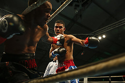 March 22, 2019 - Miami, Florida, USA - Super bantamweight NESLAN MACHADO in action against ALDIMAR SILVA on the undercard of M&R Boxing Promotion's Fight Night at the Miccosukee Resort and Gaming Dome. Machado won the bout by unanimous decision. (Credit Image: © Adam DelGiudice/ZUMA Wire)