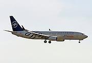 Skyteam - AirEuropa, Boeing 737-800