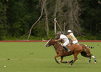 Town of Wallkill, NY - Two players race after the ball during a polo match at the Blue Sky Polo Club on Aug. 19, 2007.