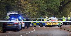 Woking Crash Serious  Brookwood Lye