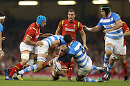 Ross Moriarty of Wales © is hauled down to ground by Pablo Matera (6) of Argentina. Under Armour 2016 series international rugby, Wales v Argentina at the Principality Stadium in Cardiff , South Wales on Saturday 12th November 2016. pic by Andrew Orchard, Andrew Orchard sports photography