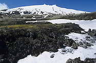 Tundra, Snaefellsnes, Iceland