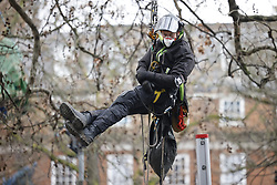 © Licensed to London News Pictures. 28/01/2021. London, UK. Bailiffs climb a tree to try and remove HS2 Rebellion protesters above Euston Square Gardens. Protestors are resisting a police operation to remove them for a second day. It is reported the protesters have built a 100ft tunnel under the gardens. Photo credit: Peter Macdiarmid/LNP