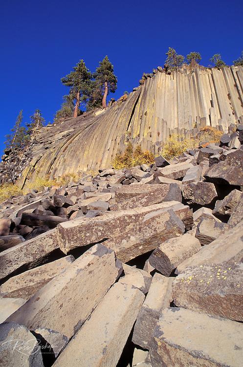 Afternoon light on cliff and blocks of columnar basalt at Devil's Postpile, Devil's Postpile National Monument, California