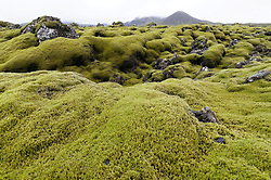 Grimsnes Vulkanfeld, Teil des Goldenes Ringes oder der Goldenen Tour, Grimsnes volcanic field,  part of the Golden Circle day tour, Tjarnarholar, Reykjanes Langjökull Gebiet, Sudurland