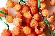 Sunshine Rasberries, Golden Yellow Raspberries, a product of the USA, purchased at Sprouts, Tucson, Arizona, USA.