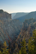 The grand canyon of the Yellowstone stretches into the distance.