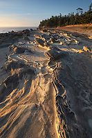Eroded sandstone concretions and formations at Shore Acres State Park Oregon.