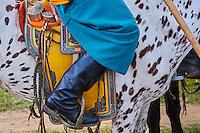 Mongolie, province de Bayankhongor, une selle mongole décorée de motifs // Mongolia, Bayankhongor province, a saddle decorated