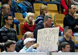 Fans of Smiljan Pavic of Krka during basketball match between KK Krka Novo mesto and Pinar Karsiyaka (TUR) in 5th Round of EuroChallenge 2013 on December 4, 2012 in Arena Leon Stukelj, Novo mesto, Slovenia. (Photo By Vid Ponikvar / Sportida)