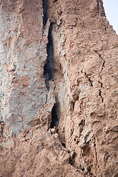 Erosion in cliff at Tunstall; East Yorkshire; England