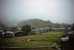 Crops among Homes
