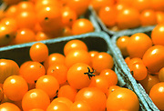 Close up, selective focus photograph of containers of Yellow Currant tomatoes