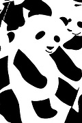 Monochrome Abstract panda design black on white