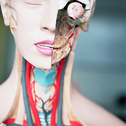 close-up of mannequin used for studying anatomy