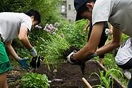 High Line Green Council - Rainbow Garden