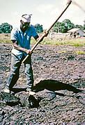 Male worker using pickaxe digging tar ay La Brea Pitch Lake, Trinidad, Trinidad and Tobago, early 1960s