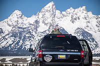 Chris McBarnes, president of The WYldlife Fund, scans the landscape on April 19 during a wildlife tour with the Wyoming Game and Fish Commission and other state wildlife stakeholders in Grand Teton National Park .