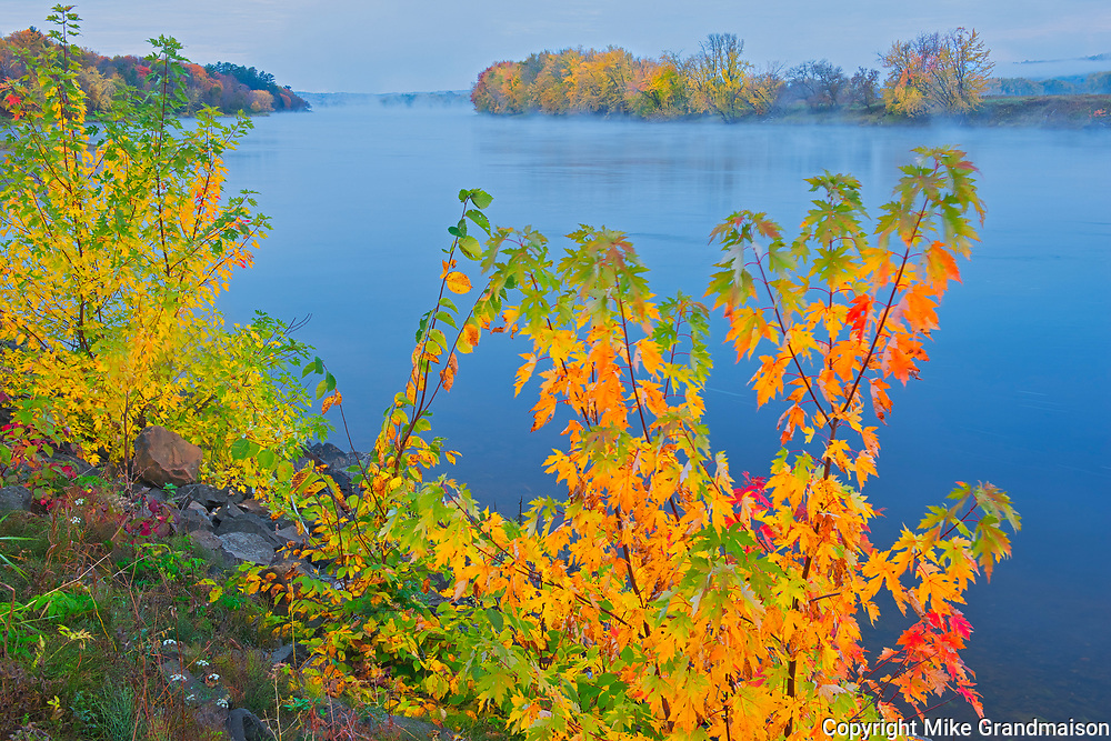 The Saint John River and the Acadian forest in autumn foliage. <br /><br />New Brunswick<br />Canada