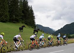 12.07.2019, Kitzbühel, AUT, Ö-Tour, Österreich Radrundfahrt, 6. Etappe, von Kitzbühel nach Kitzbüheler Horn (116,7 km), im Bild Die Ausreissergruppe des Tages // tha attackers of the day during 6th stage from Kitzbühel to Kitzbüheler Horn (116,7 km) of the 2019 Tour of Austria. Kitzbühel, Austria on 2019/07/12. EXPA Pictures © 2019, PhotoCredit: EXPA/ Reinhard Eisenbauer