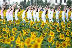 CHENZHOU, Sept. 7, 2016 (Xinhua) -- Yoga enthusiasts practice yoga at a sunflower park in Chenzhou, central China's Hunan Province, Sept. 7, 2016. (Xinhua/Li Ke) (wf) (Credit Image: © Li Ke/Xinhua via ZUMA Wire)