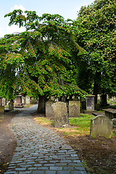 View of The Howff graveyard in Dundee, Tayside, Scotland, UK