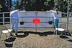 Sarah Borrey & Barbara Linsley Working Trial, Choosing Colored Buckets