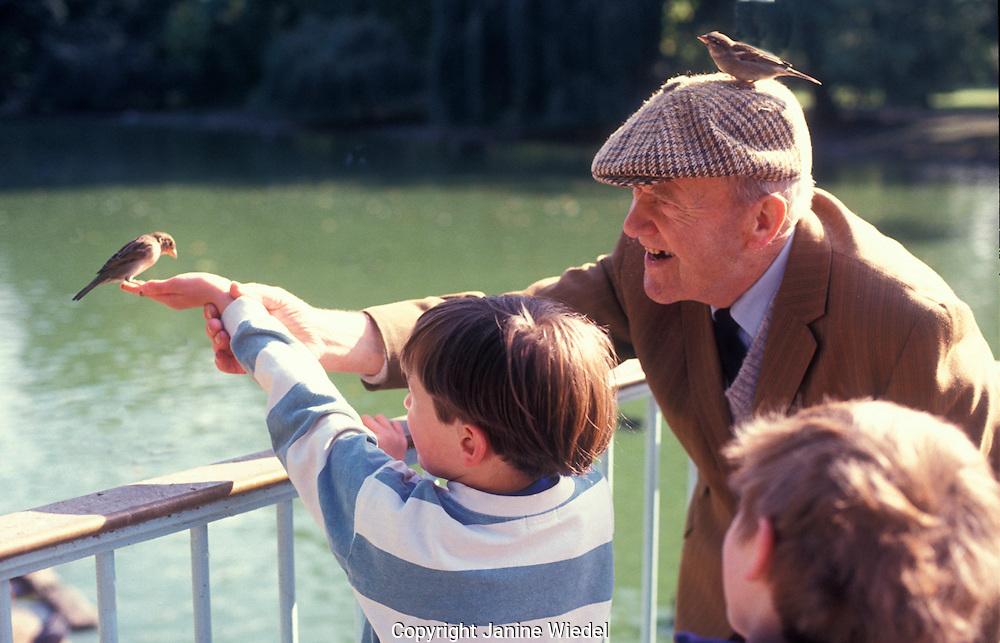 Grandfather feeding birds in Green park with grandchildren.