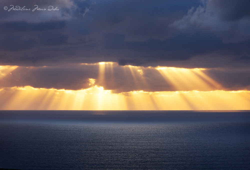 Golden Horizon / wt037