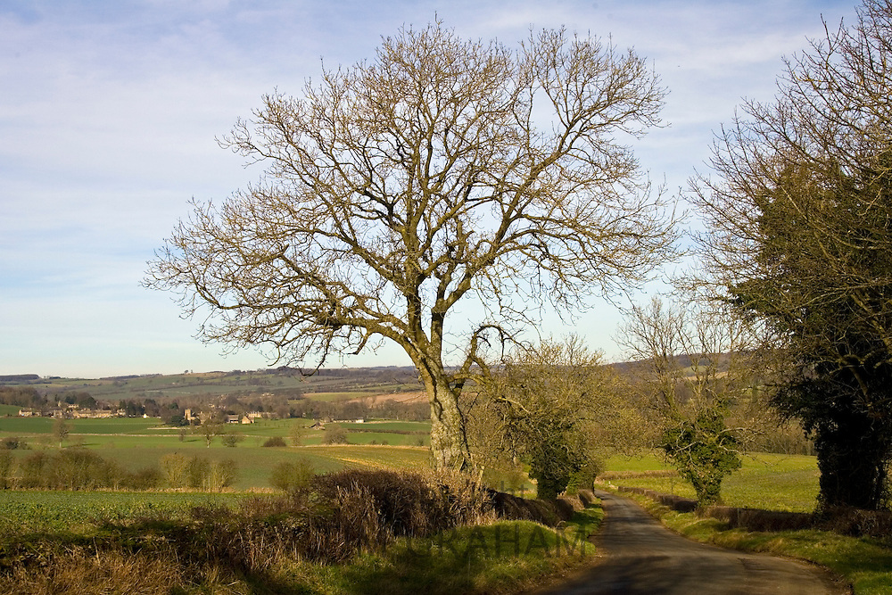 Country lane in Gloucestershire, United Kingdom